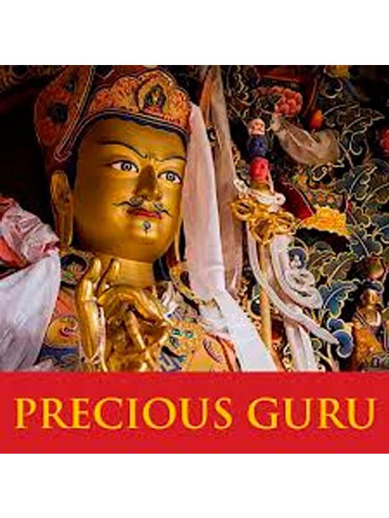 Precious Guru Consultancy